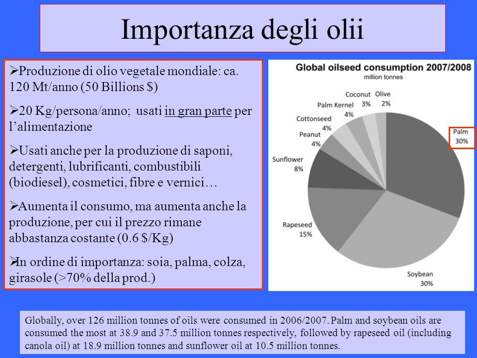 Importanza degli olii Produzione di olio vegetale mondiale: ca. 120 Mt/anno (50 Billions $) 20 Kg/persona/anno; usati in gran parte per lalimentazione