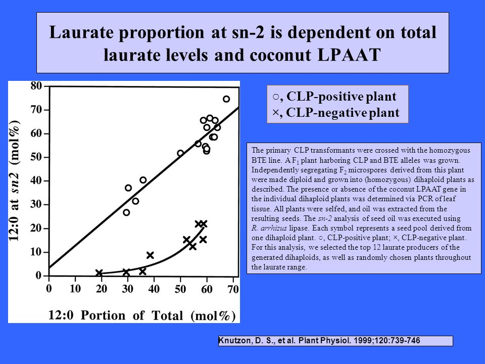 Laurate proportion at sn-2 is dependent on total laurate levels and coconut LPAAT Knutzon, D. S., et al. Plant Physiol. 1999;120:739-746 The primary C