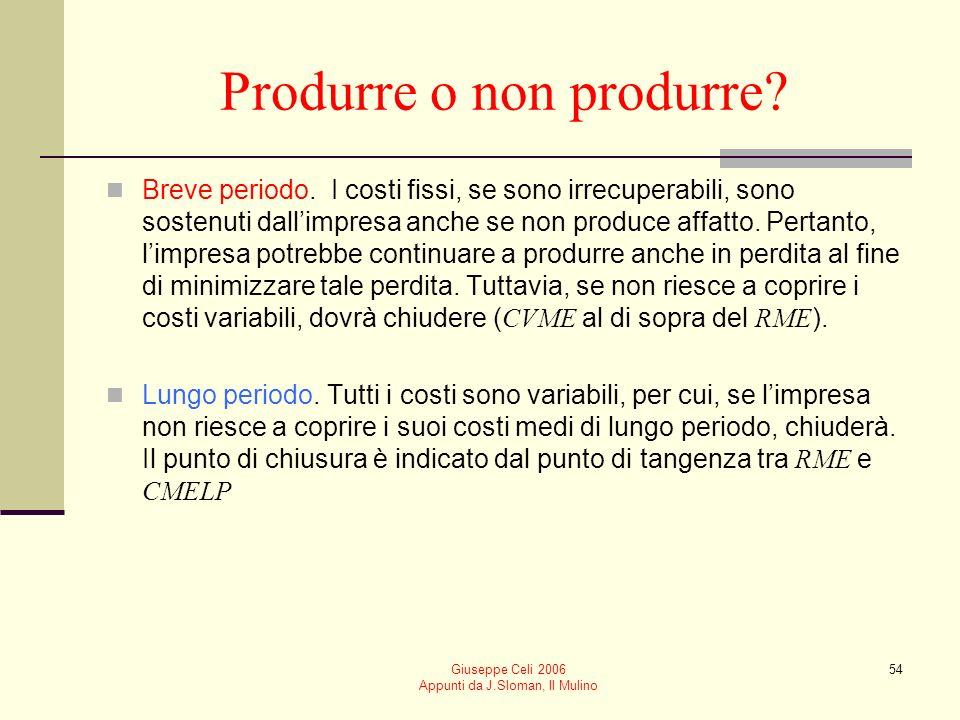Giuseppe Celi 2006 Appunti da J.Sloman, Il Mulino 53 Il significato di profitto Il profitto che si vuole massimizzare è leccedenza sul profitto normal