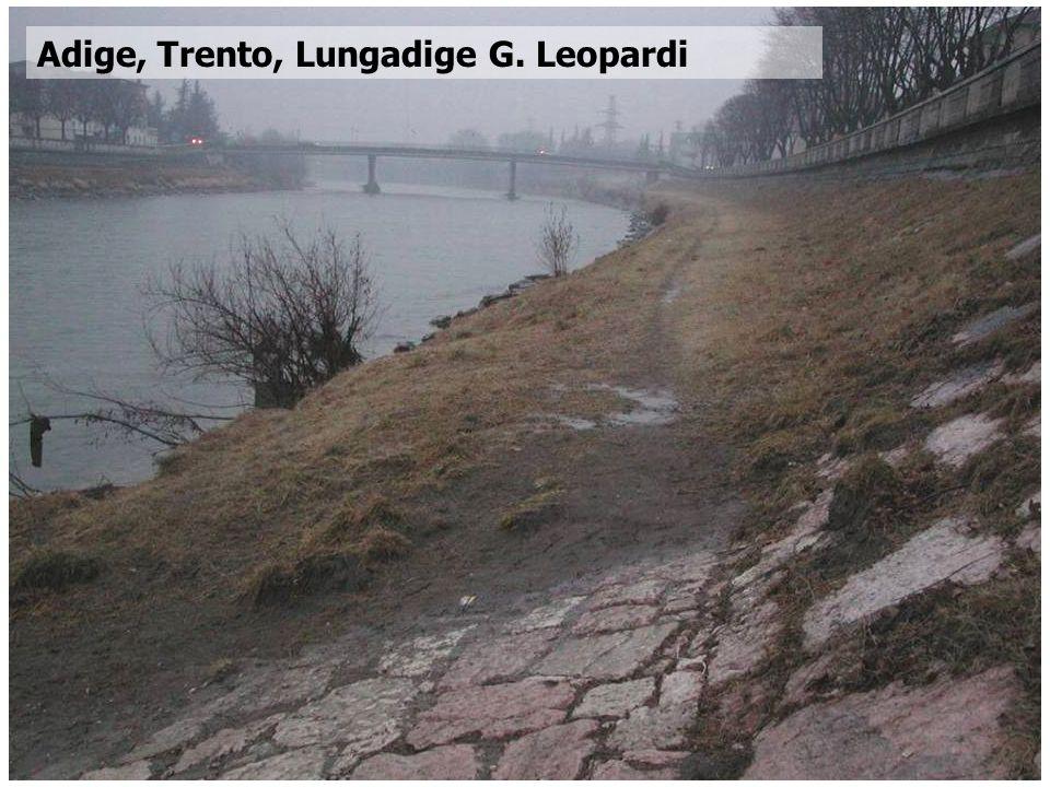 Corso di Idrodinamica – Anno 2009 Adige, Trento, Lungadige G. Leopardi