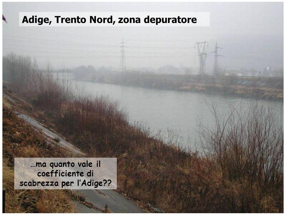 Corso di Idrodinamica – Anno 2009 Adige, Trento Nord, zona depuratore …ma quanto vale il coefficiente di scabrezza per lAdige??
