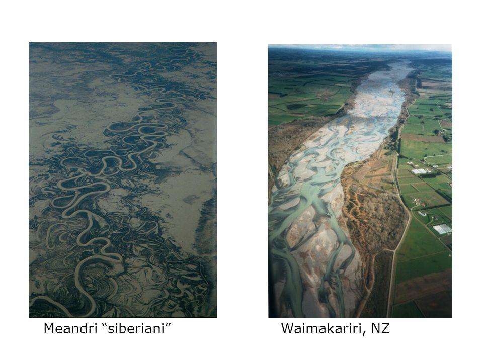 Meandri siberianiWaimakariri, NZ