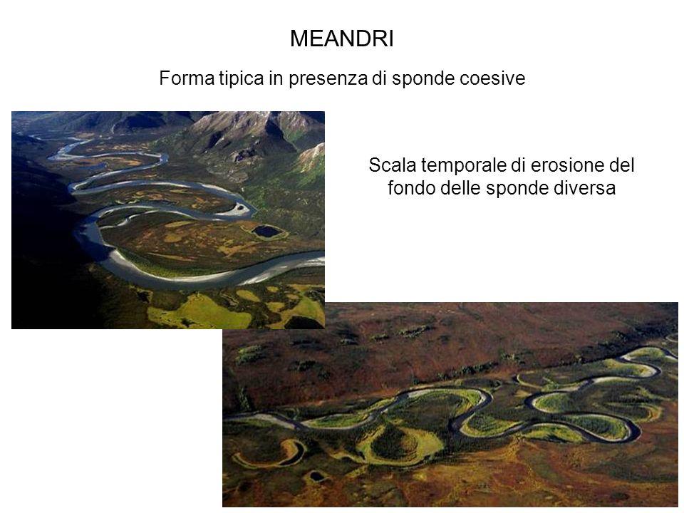Corso di Idrodinamica – Anno 2009 MEANDRI Forma tipica in presenza di sponde coesive Scala temporale di erosione del fondo delle sponde diversa