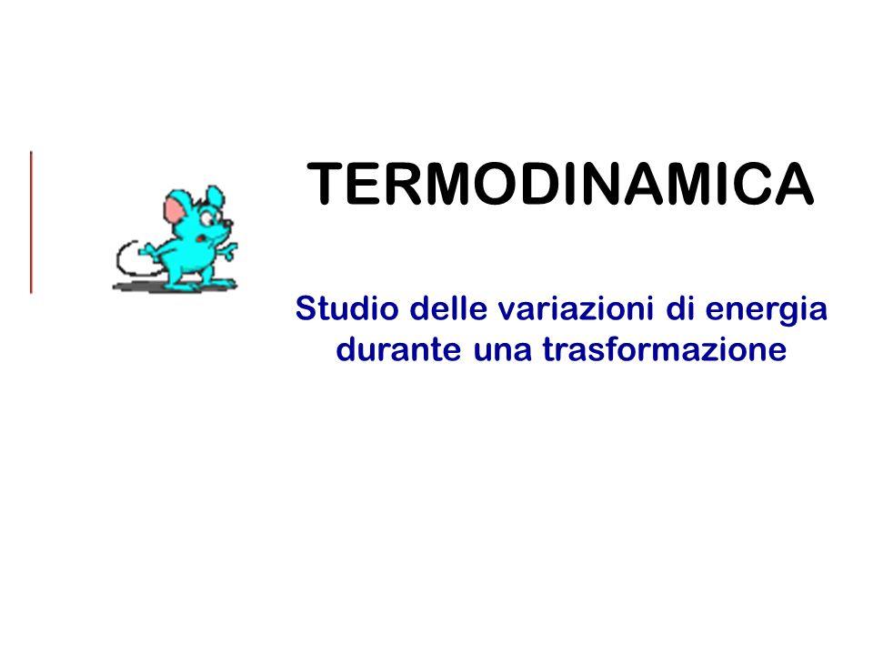 TERMODINAMICA Studio delle variazioni di energia durante una trasformazione