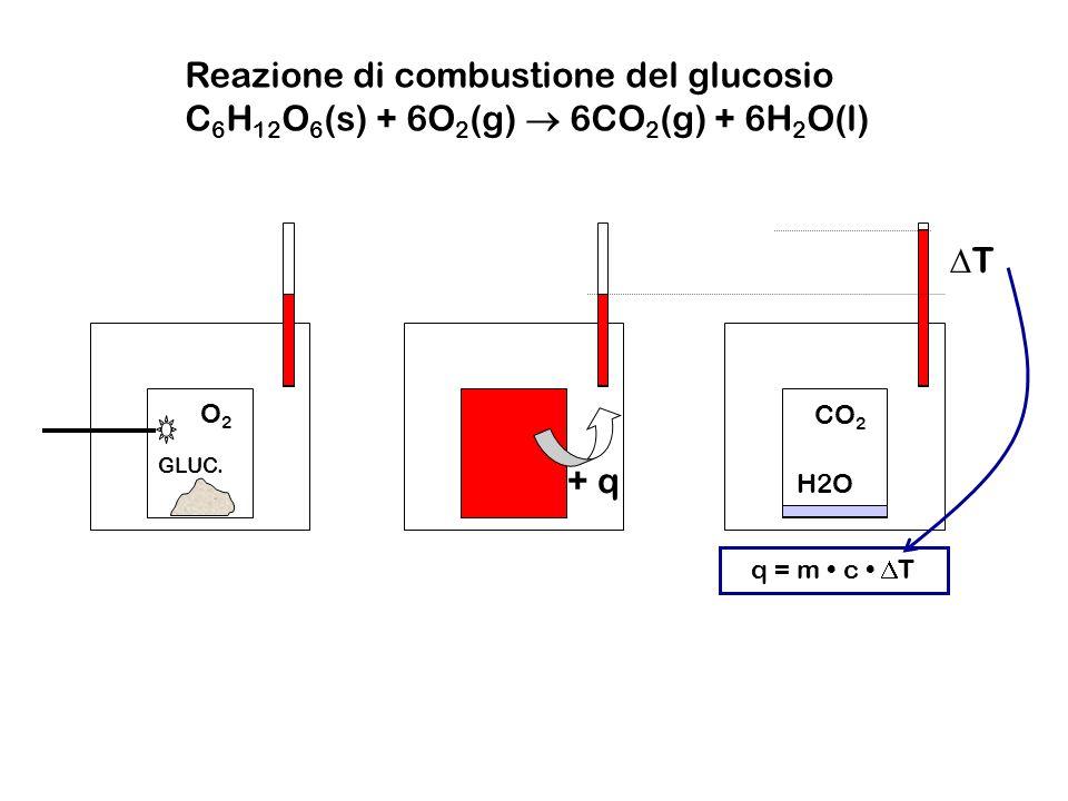 O2O2 GLUC. CO 2 H2O + q T q = m c T Reazione di combustione del glucosio C 6 H 12 O 6 (s) + 6O 2 (g) 6CO 2 (g) + 6H 2 O(l)