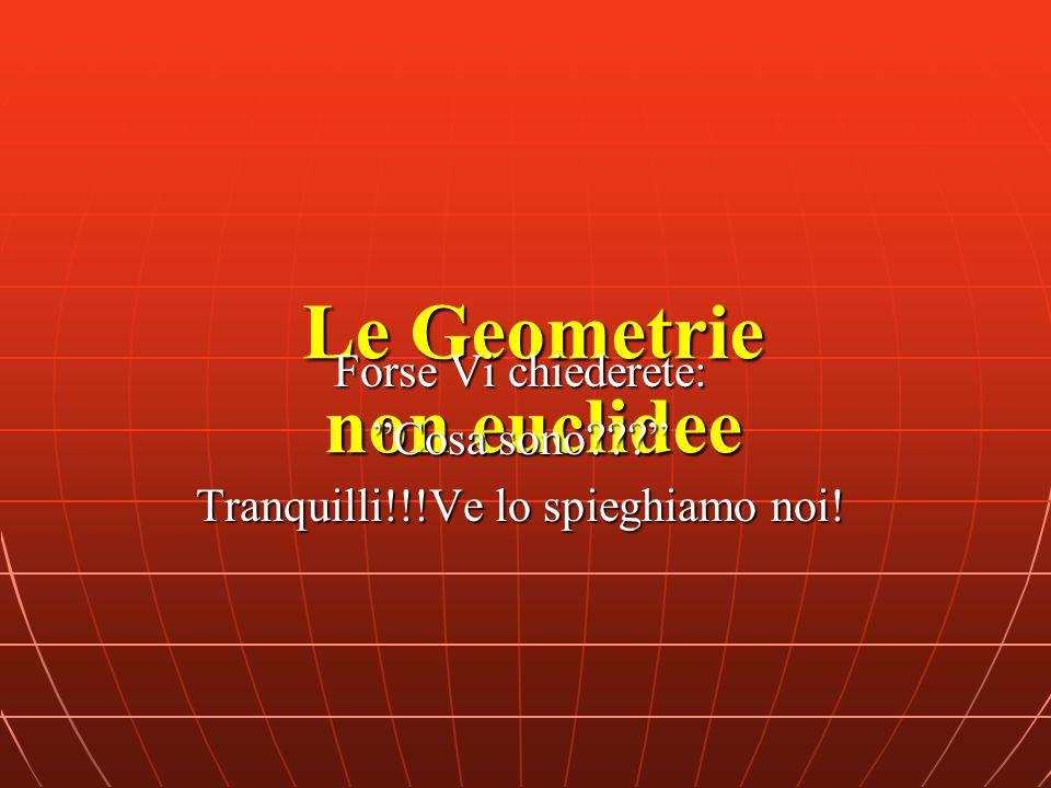 Le Geometrie non euclidee Forse Vi chiederete: Cosa sono??? Tranquilli!!!Ve lo spieghiamo noi!