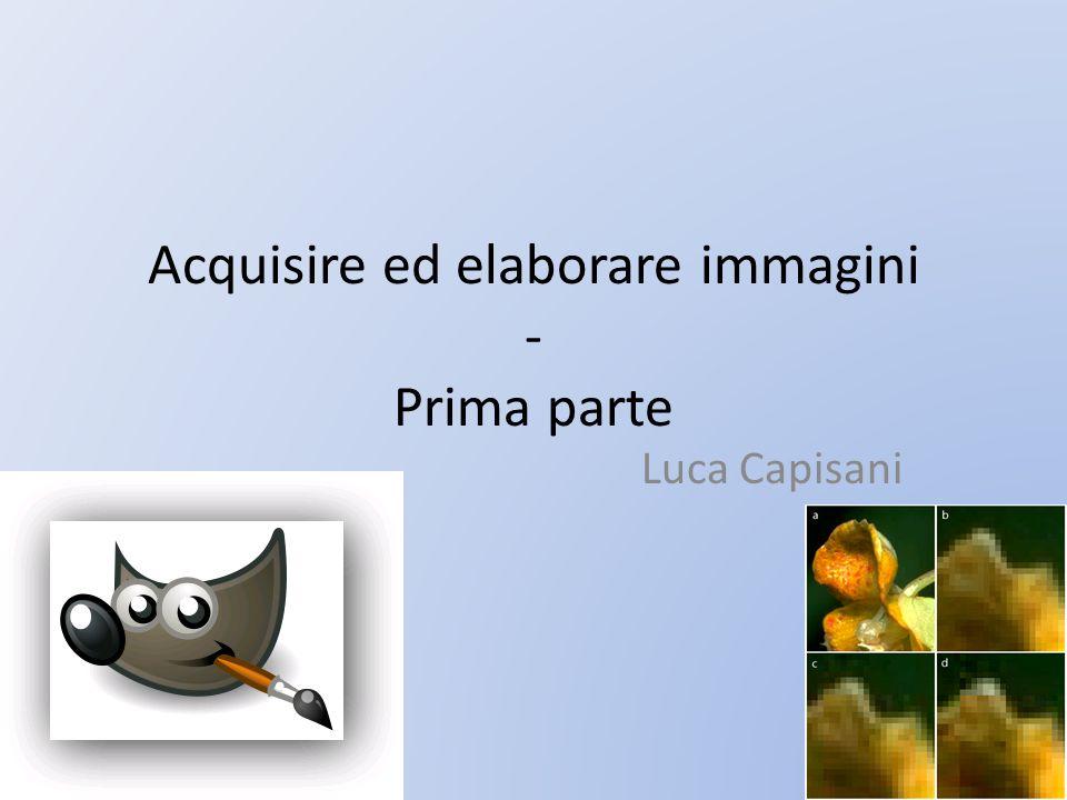 Acquisire ed elaborare immagini - Prima parte Luca Capisani
