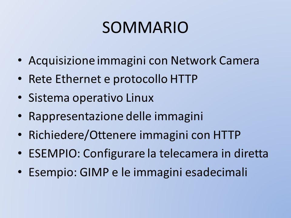 SOMMARIO Acquisizione immagini con Network Camera Rete Ethernet e protocollo HTTP Sistema operativo Linux Rappresentazione delle immagini Richiedere/O