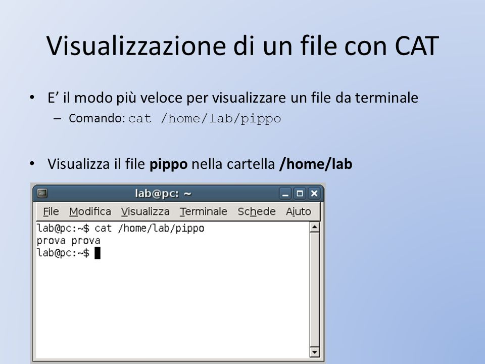 Visualizzazione di un file con CAT E il modo più veloce per visualizzare un file da terminale – Comando: cat /home/lab/pippo Visualizza il file pippo