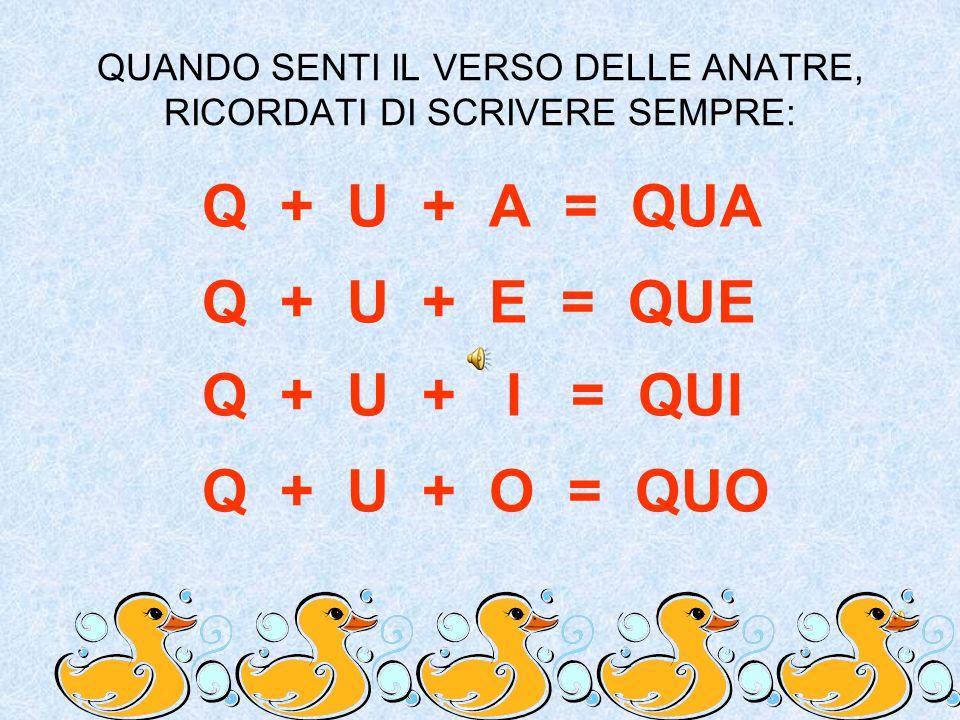 QUANDO SENTI IL VERSO DELLE ANATRE, RICORDATI DI SCRIVERE SEMPRE: Q + U + A = QUA Q + U + E = QUE Q + U + I = QUI Q + U + O = QUO