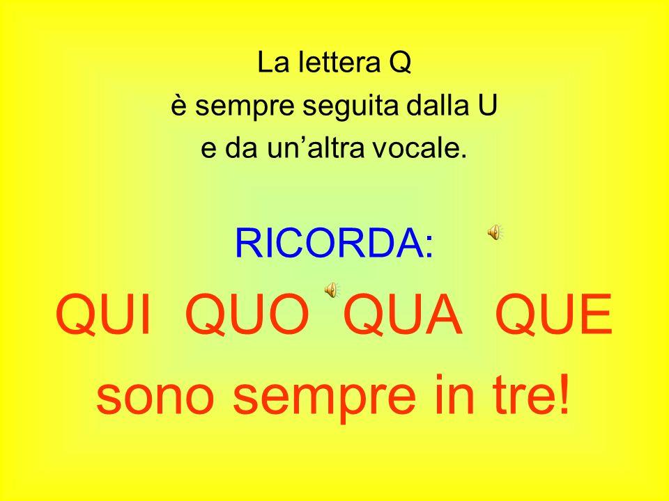 La lettera Q è sempre seguita dalla U e da unaltra vocale.