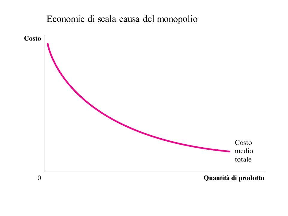 Monopolio vs. Concorrenza –Monopolio Unico produttore Si confronta con una curva di domanda inclinata negativamente (poco elastica) Determina il prezz