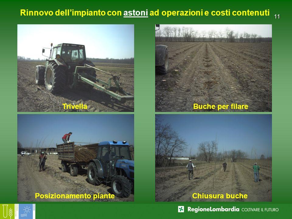 11 Rinnovo dellimpianto con astoni ad operazioni e costi contenuti TrivellaBuche per filare Posizionamento pianteChiusura buche