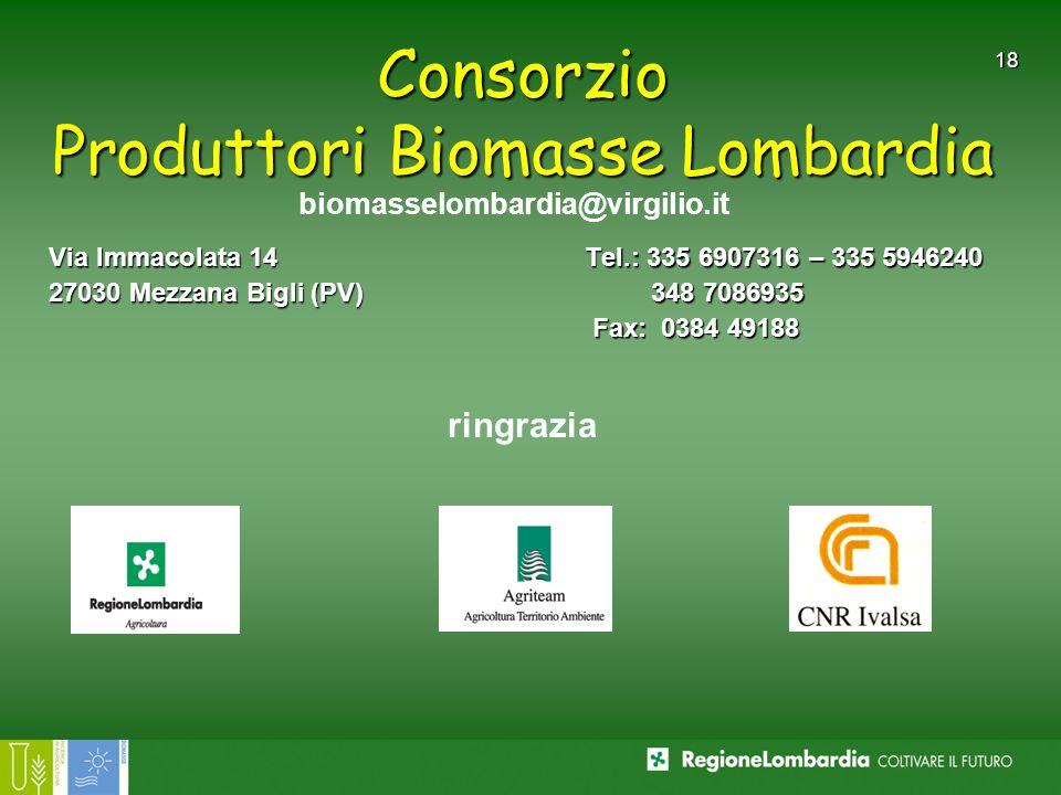 18 Consorzio Produttori Biomasse Lombardia Via Immacolata 14 27030 Mezzana Bigli (PV) Tel.: 335 6907316 – 335 5946240 348 7086935 348 7086935 Fax: 038