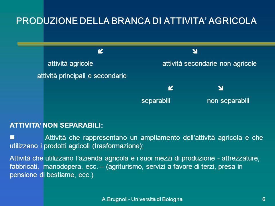 A.Brugnoli - Università di Bologna6 PRODUZIONE DELLA BRANCA DI ATTIVITA AGRICOLA attività agricole attività secondarie non agricole attività principal