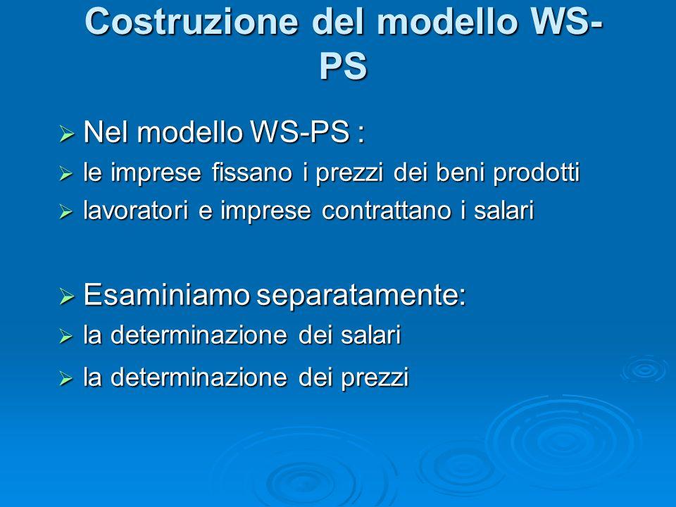 Costruzione del modello WS- PS Nel modello WS-PS : Nel modello WS-PS : le imprese fissano i prezzi dei beni prodotti le imprese fissano i prezzi dei beni prodotti lavoratori e imprese contrattano i salari lavoratori e imprese contrattano i salari Esaminiamo separatamente: Esaminiamo separatamente: la determinazione dei salari la determinazione dei salari la determinazione dei prezzi la determinazione dei prezzi