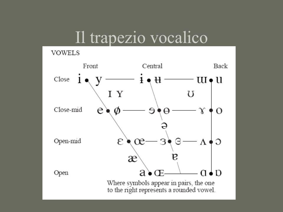 Il trapezio vocalico