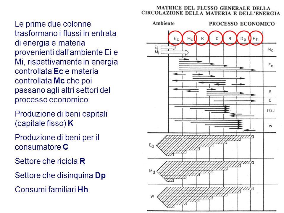Le prime due colonne trasformano i flussi in entrata di energia e materia provenienti dallambiente Ei e Mi, rispettivamente in energia controllata Ec