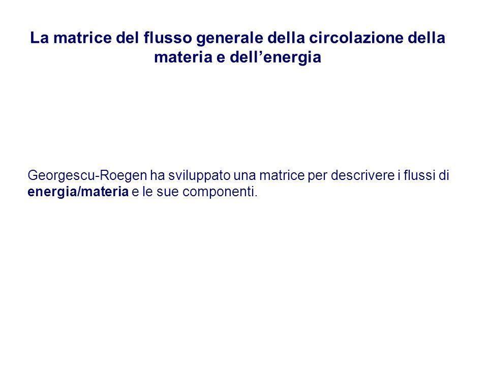 La matrice del flusso generale della circolazione della materia e dellenergia Georgescu-Roegen ha sviluppato una matrice per descrivere i flussi di en