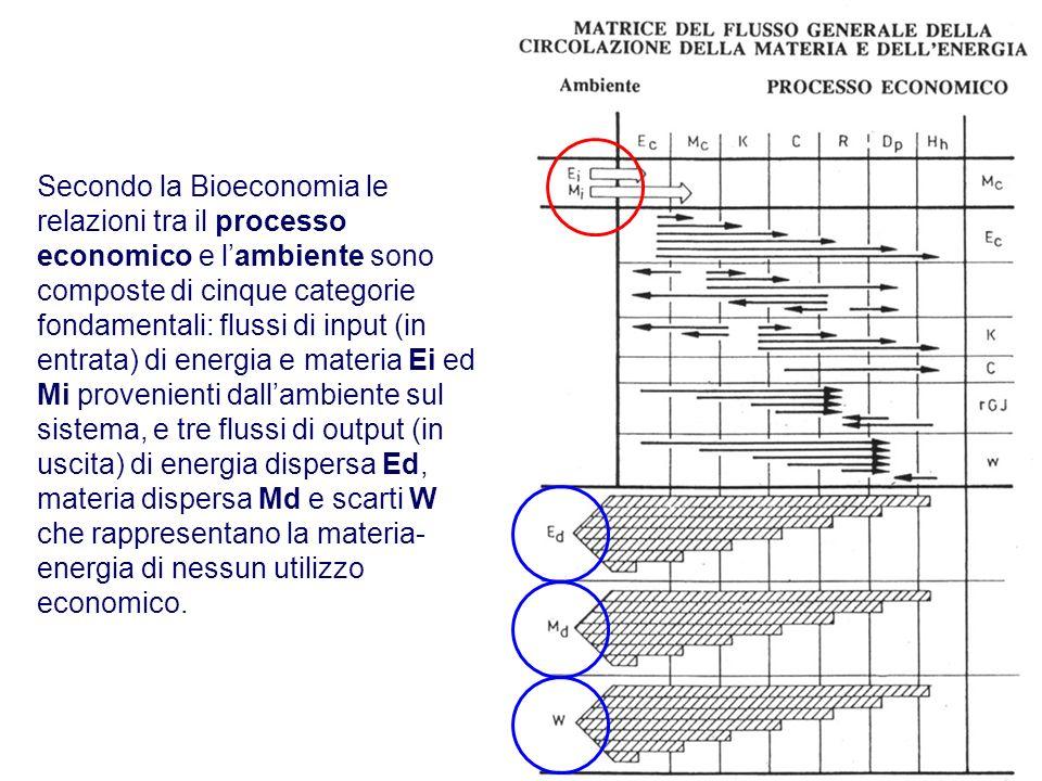 Secondo la Bioeconomia le relazioni tra il processo economico e lambiente sono composte di cinque categorie fondamentali: flussi di input (in entrata)