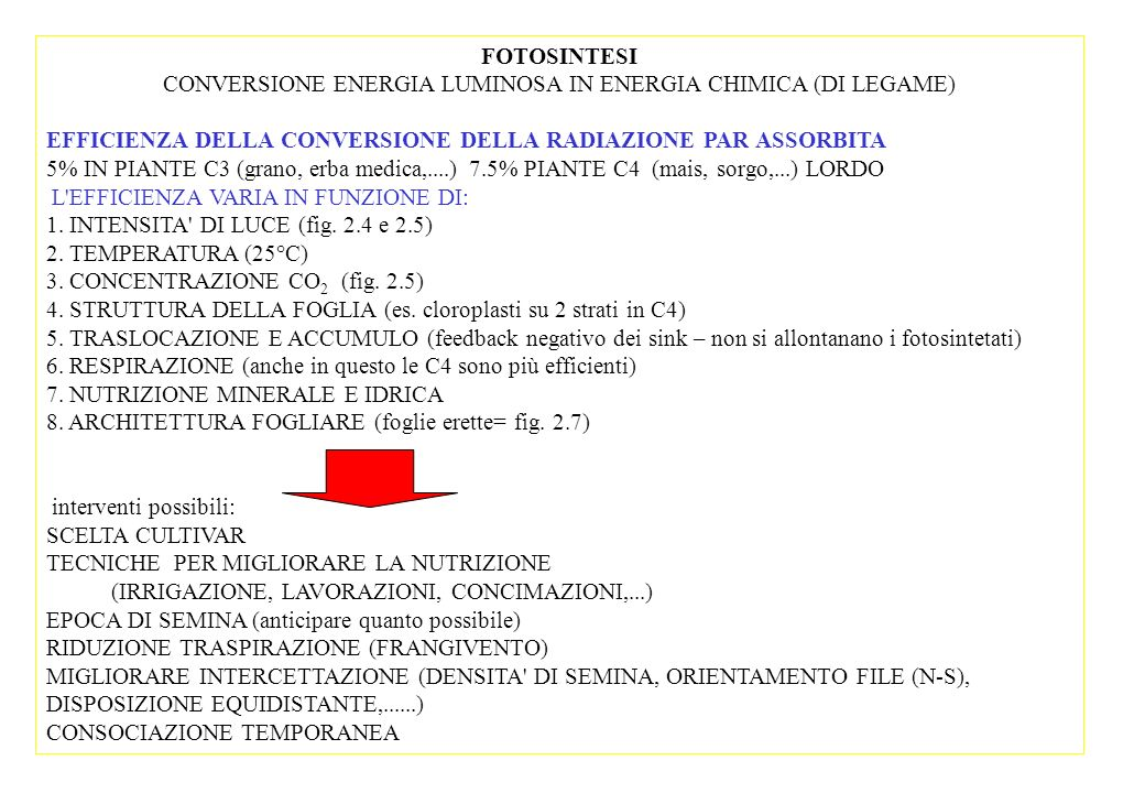 FOTOSINTESI CONVERSIONE ENERGIA LUMINOSA IN ENERGIA CHIMICA (DI LEGAME) EFFICIENZA DELLA CONVERSIONE DELLA RADIAZIONE PAR ASSORBITA 5% IN PIANTE C3 (grano, erba medica,....)7.5% PIANTE C4 (mais, sorgo,...) LORDO L EFFICIENZA VARIA IN FUNZIONE DI: 1.