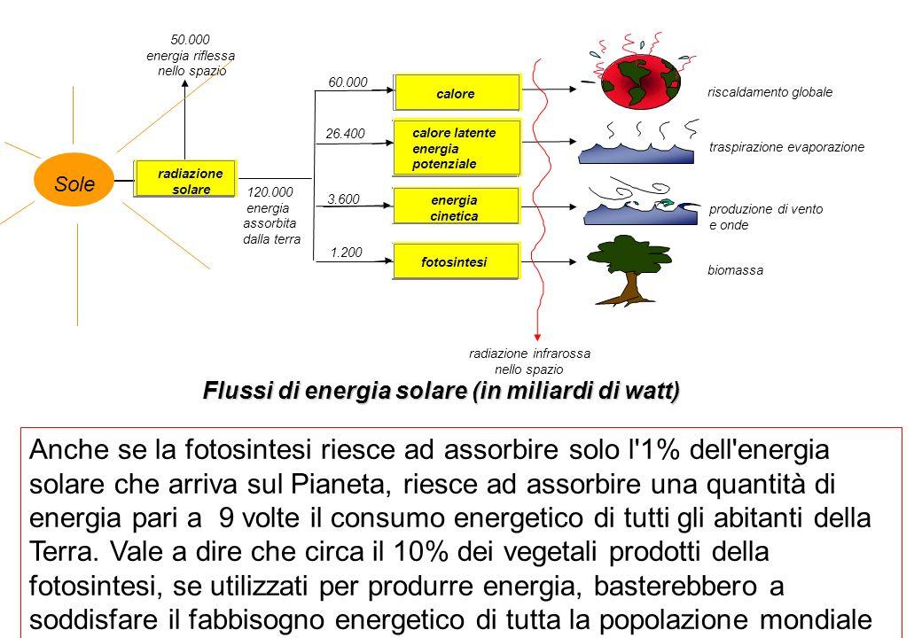 Flussi di energia solare (in miliardi di watt) radiazione solare 50.000 energia riflessa nello spazio 120.000 energia assorbita dalla terra calore energia cinetica fotosintesi calore latente energia potenziale riscaldamento globale traspirazione evaporazione produzione di vento e onde biomassa radiazione infrarossa nello spazio Sole 60.000 26.400 3.600 1.200 Anche se la fotosintesi riesce ad assorbire solo l 1% dell energia solare che arriva sul Pianeta, riesce ad assorbire una quantità di energia pari a 9 volte il consumo energetico di tutti gli abitanti della Terra.