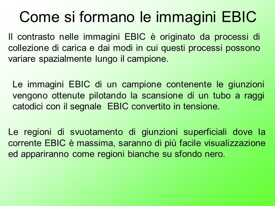 Come si formano le immagini EBIC Le immagini EBIC di un campione contenente le giunzioni vengono ottenute pilotando la scansione di un tubo a raggi ca