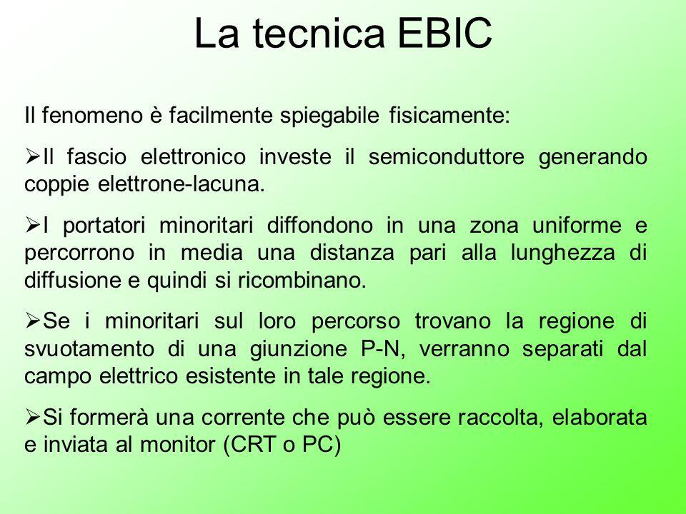 La tecnica EBIC Il fenomeno è facilmente spiegabile fisicamente: Il fascio elettronico investe il semiconduttore generando coppie elettrone-lacuna. I