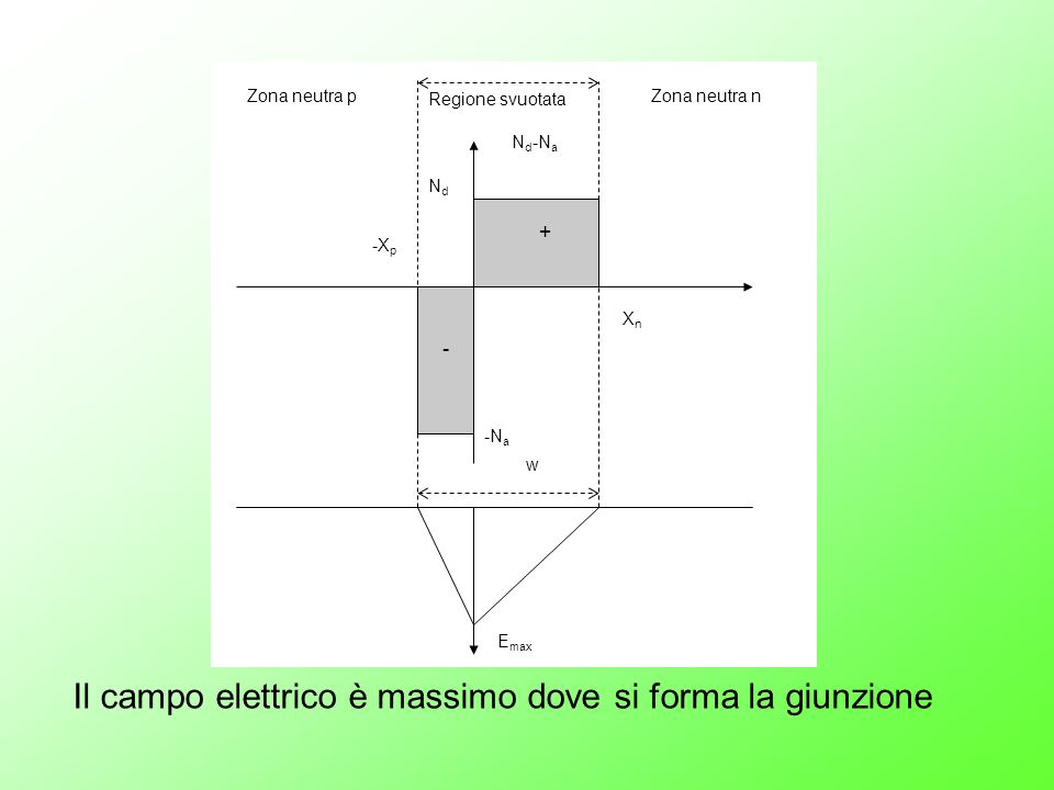 Zona neutra n + - NdNd -N a XnXn -X p N d -N a w E max Regione svuotata Zona neutra p Il campo elettrico è massimo dove si forma la giunzione