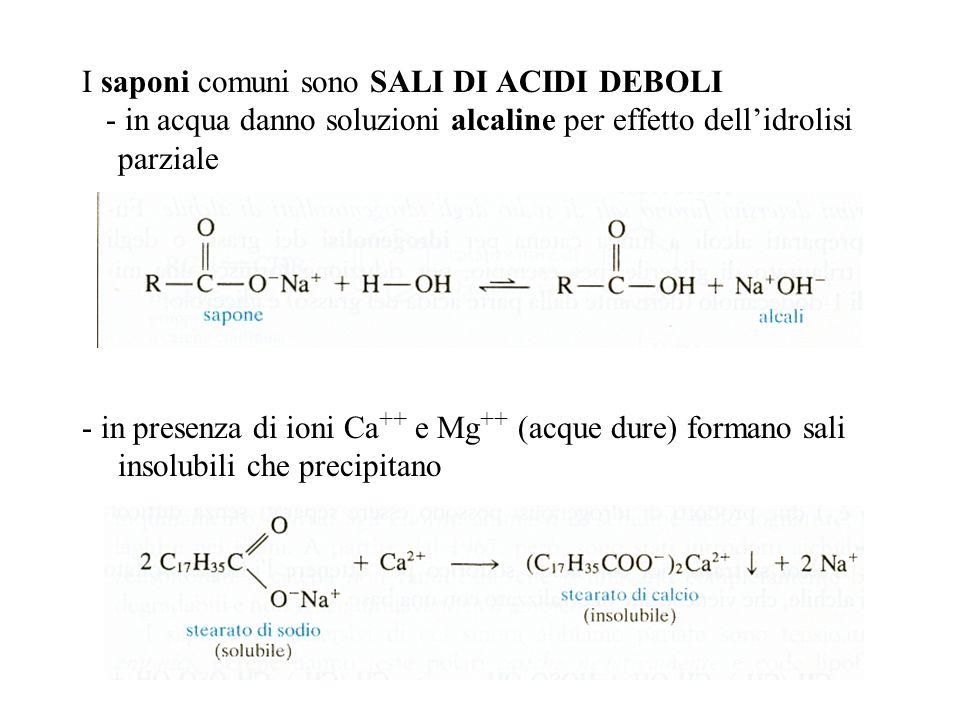I saponi comuni sono SALI DI ACIDI DEBOLI - in acqua danno soluzioni alcaline per effetto dellidrolisi parziale - in presenza di ioni Ca ++ e Mg ++ (acque dure) formano sali insolubili che precipitano