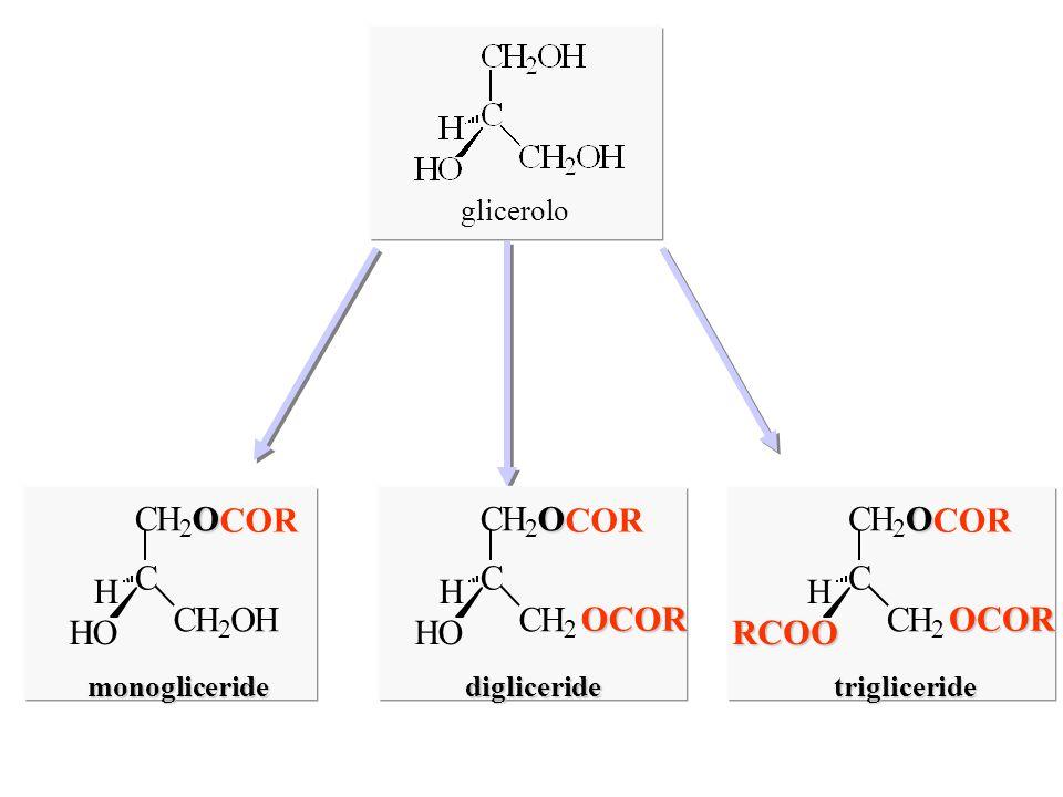 glicerolo C CH 2 O COR CH 2 OH HO H monogliceride C CH 2 O CH 2 OCOR HO H digliceride C CH 2 O CH 2 OCOR RCOO H trigliceride