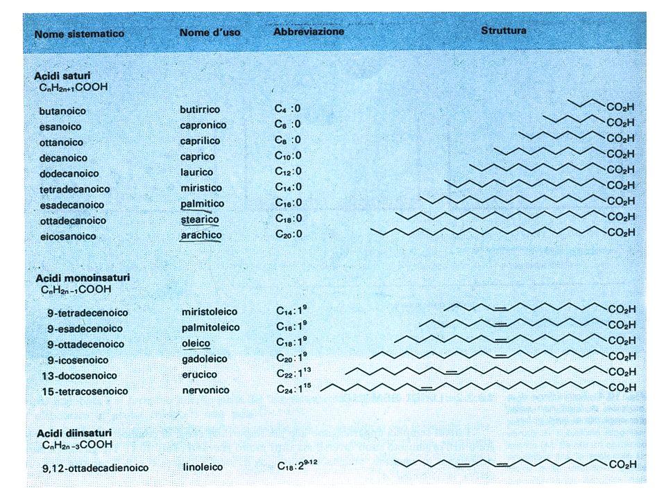 ACIDI GRASSI: Proprietà fisiche Punto di fusione aumenta con lallungarsi della catena alifatica La presenza di doppi legami causa labbassamento del punto di fusione (per lisomero cis)