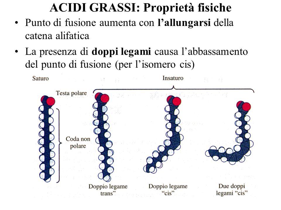 ACIDI GRASSI: Proprietà fisiche Punto di fusione aumenta con lallungarsi della catena alifatica La presenza di doppi legami causa labbassamento del pu