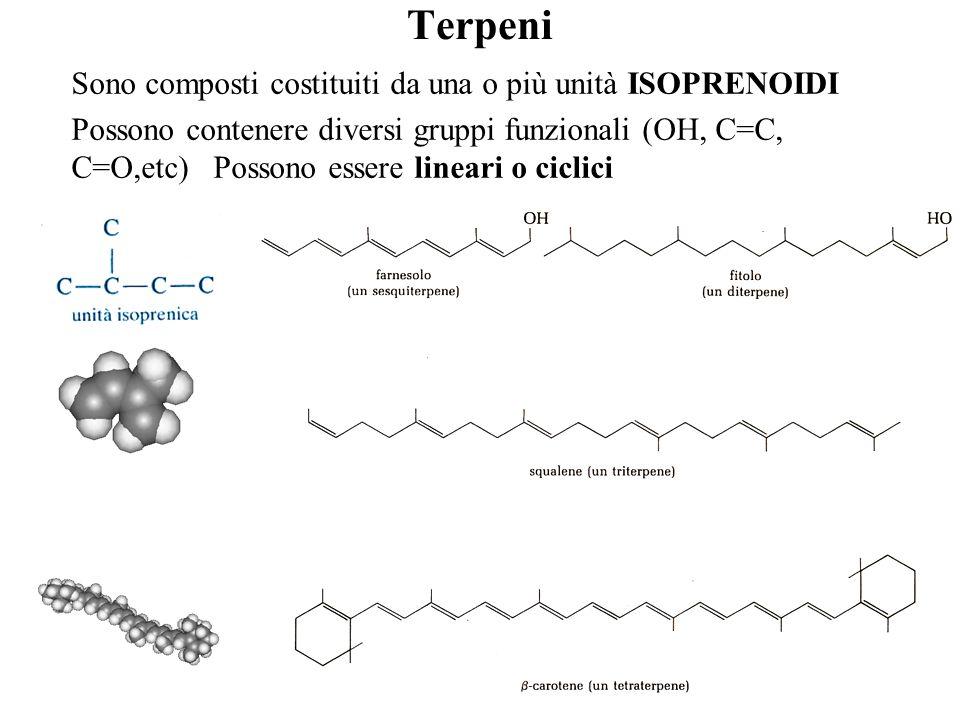 Terpeni Sono composti costituiti da una o più unità ISOPRENOIDI Possono contenere diversi gruppi funzionali (OH, C=C, C=O,etc) Possono essere lineari o ciclici