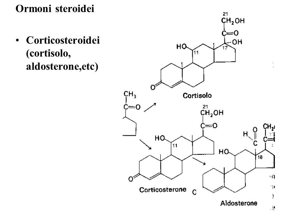 Ormoni steroidei Corticosteroidei (cortisolo, aldosterone,etc)