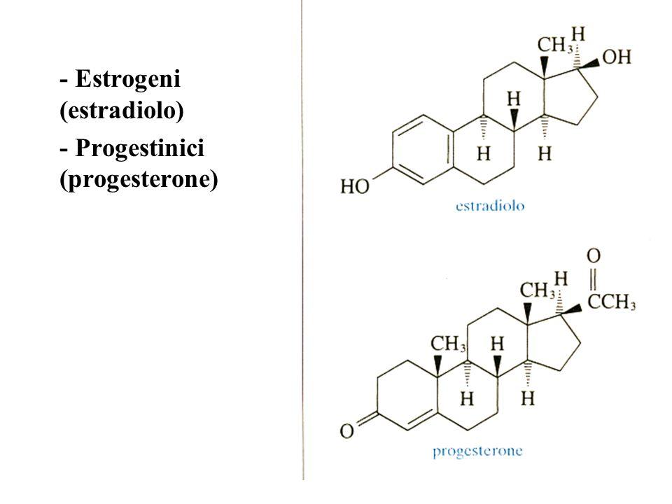 - Estrogeni (estradiolo) - Progestinici (progesterone)