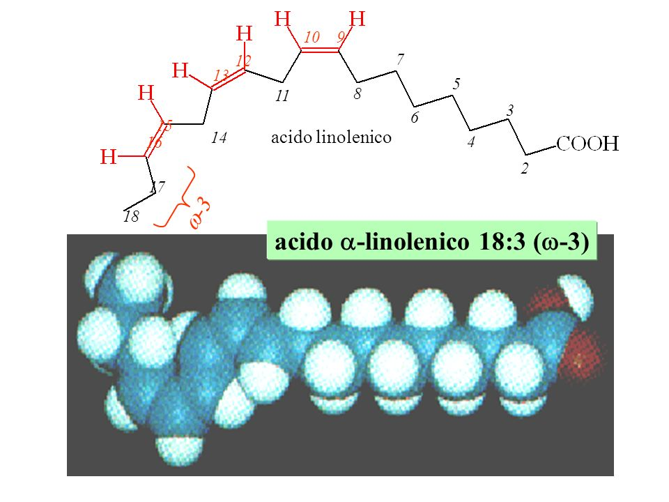 2 4 6 8 3 5 7 910 11 13 12 14 15 16 17 18 -3 acido linolenico acido -linolenico 18:3 ( -3)