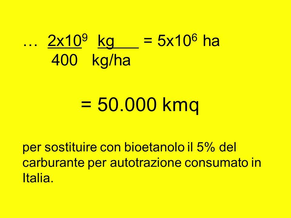 … 2x10 9 kg = 5x10 6 ha 400 kg/ha = 50.000 kmq per sostituire con bioetanolo il 5% del carburante per autotrazione consumato in Italia.