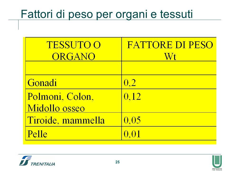 25 Fattori di peso per organi e tessuti