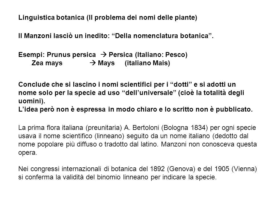 Il Manzoni lasciò un inedito: Della nomenclatura botanica. Esempi: Prunus persica Persica (Italiano: Pesco) Zea mays Mays (italiano Mais) Linguistica