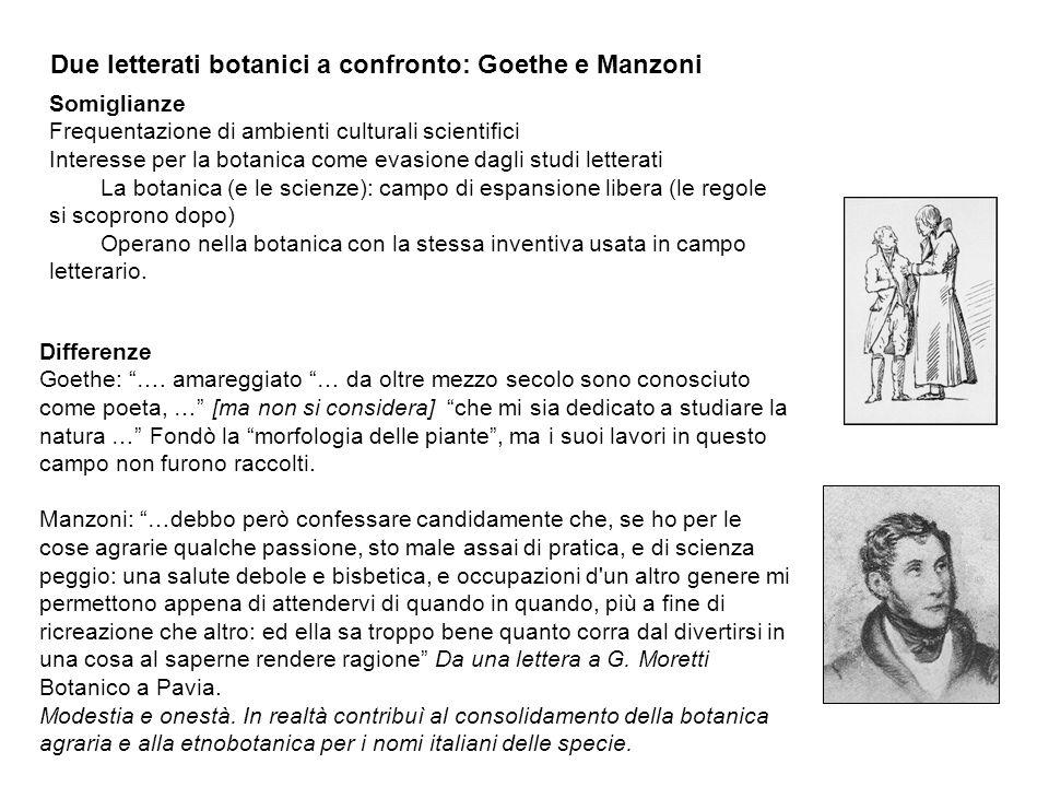 Due letterati botanici a confronto: Goethe e Manzoni Somiglianze Frequentazione di ambienti culturali scientifici Interesse per la botanica come evasi
