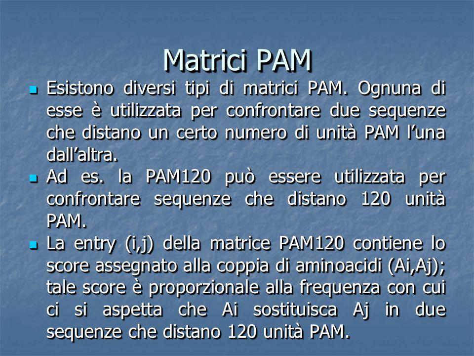 Matrici PAM Esistono diversi tipi di matrici PAM.