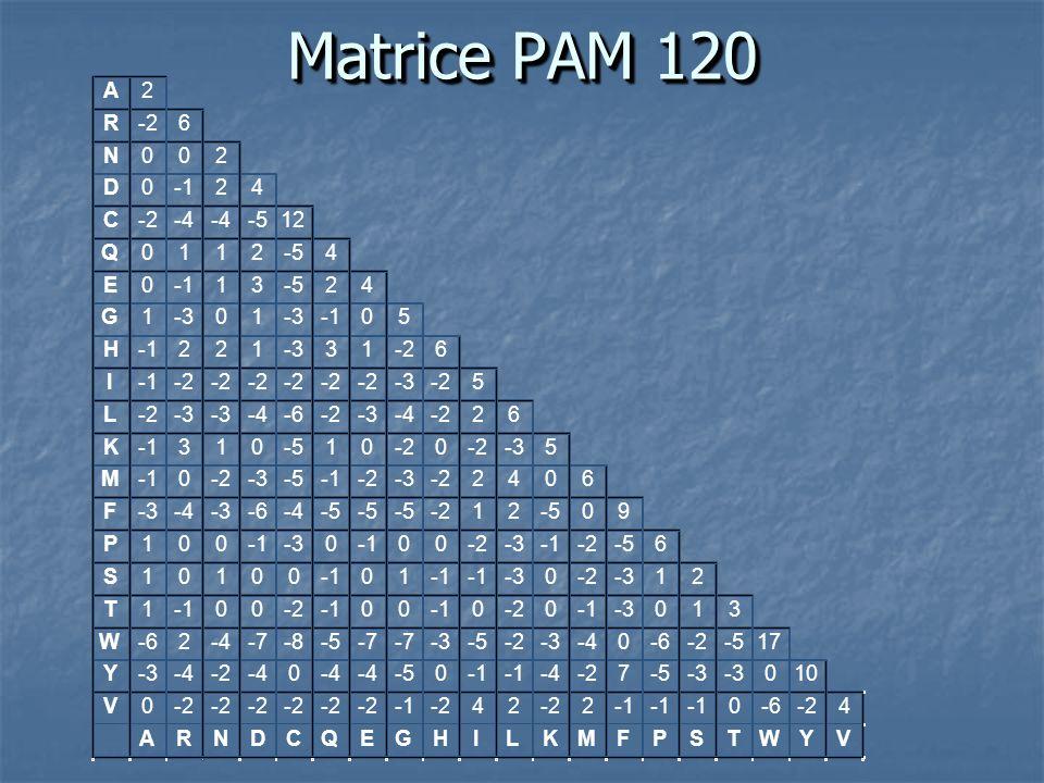 Matrice PAM 120