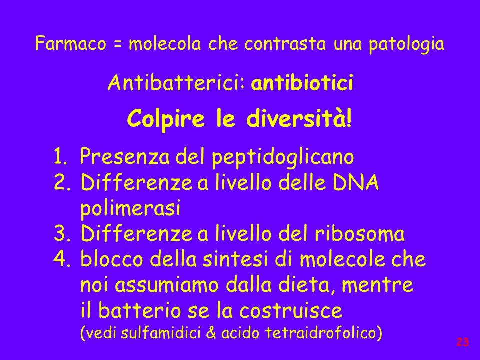 Farmaco = molecola che contrasta una patologia Antibatterici: antibiotici Colpire le diversità! 1.Presenza del peptidoglicano 2.Differenze a livello d