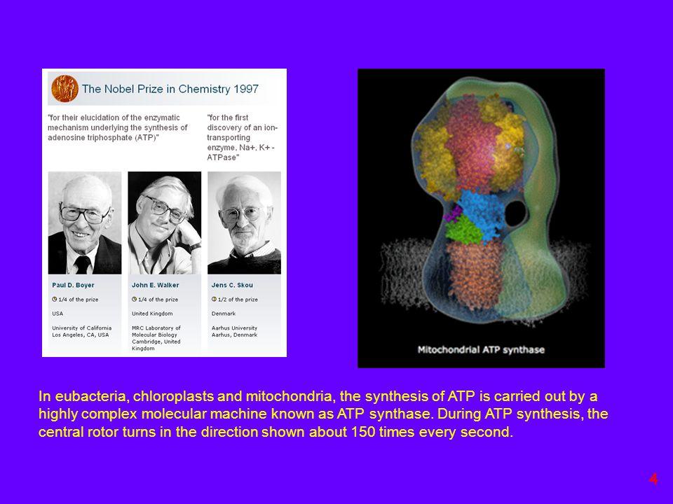Farmaco = molecola che contrasta una patologia Antibatterici: antibiotici 25 Crystal violet or Gentian violet also known as Methyl Violet10B, hexamethylpararosaniline chloride, or pyoctanin