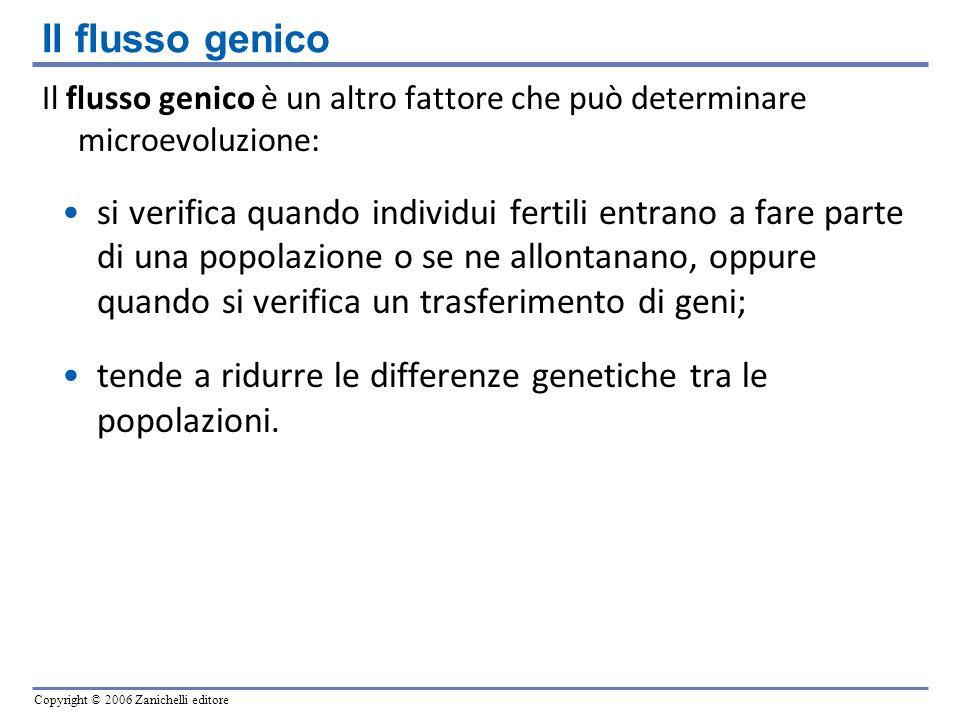 Copyright © 2006 Zanichelli editore Il flusso genico è un altro fattore che può determinare microevoluzione: si verifica quando individui fertili entr