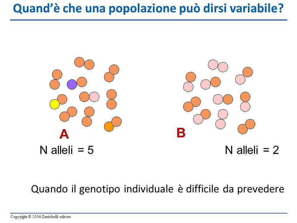 Copyright © 2006 Zanichelli editore Quandè che una popolazione può dirsi variabile? A B N alleli = 5 N alleli = 2 Quando il genotipo individuale è dif