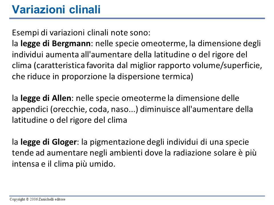 Copyright © 2006 Zanichelli editore Variazioni clinali Esempi di variazioni clinali note sono: la legge di Bergmann: nelle specie omeoterme, la dimens