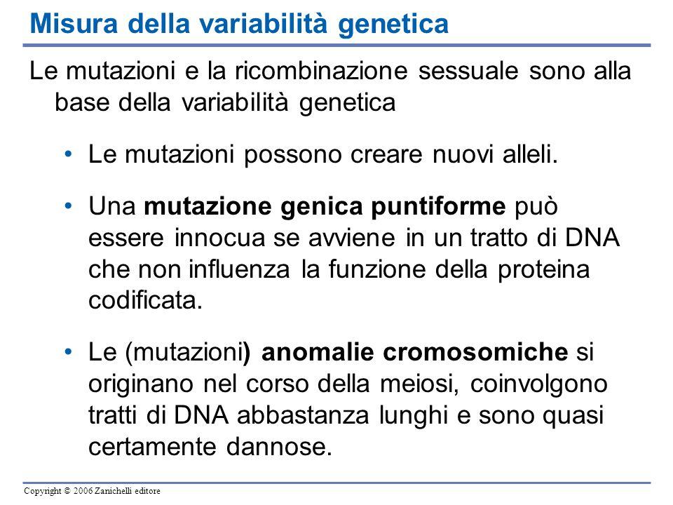 Copyright © 2006 Zanichelli editore Le mutazioni e la ricombinazione sessuale sono alla base della variabilità genetica Le mutazioni possono creare nu