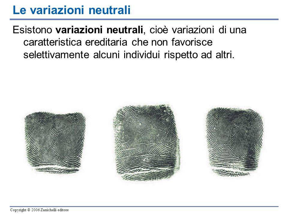 Copyright © 2006 Zanichelli editore Esistono variazioni neutrali, cioè variazioni di una caratteristica ereditaria che non favorisce selettivamente al